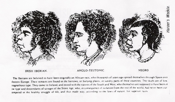 VictorianAnti-Irish Racism